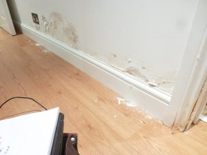 An image showing a skirting board and a wall featuring peeling paint which was caused by rising damp