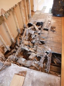 An image showing acute and aggressive decay to suspended floor structure by Dry rot fungal infestation