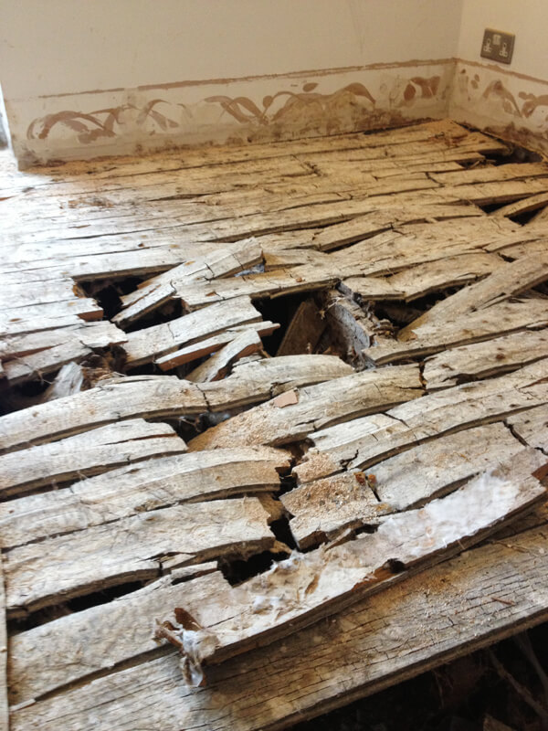 Timber Preservation Advanced Preservations Ltd