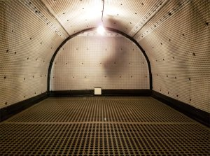 an image of a vault